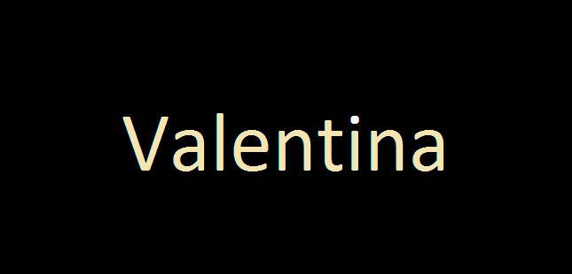 Valentina Comércio de Vestuário_logo